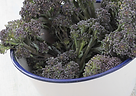 PURPLE BROC.png