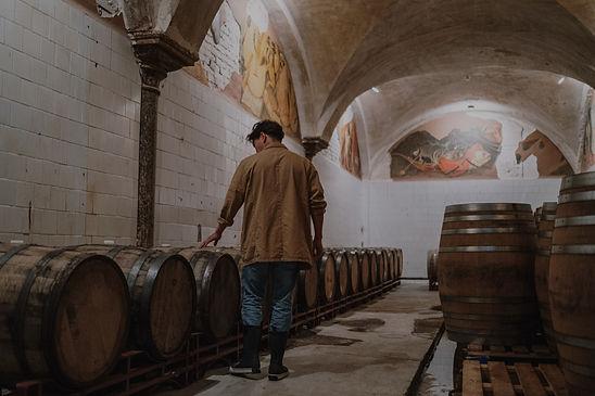 Vente de vins aux professionnels de la restaurations et de l'hôtellerie