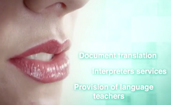 Tarso Translation Advert