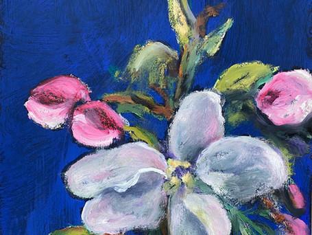Apple Blossoms #1, 10 x 12, 5-20