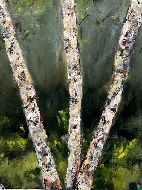 River Birch #3, oil on paper, 10 x 14, 5-20