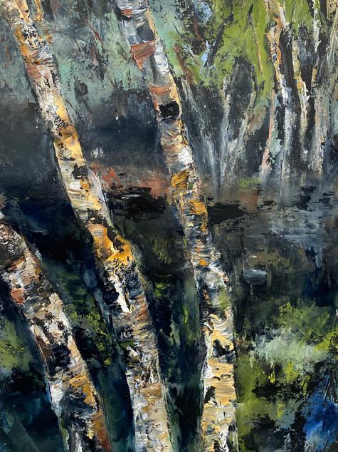 River Birch #3 (high res)