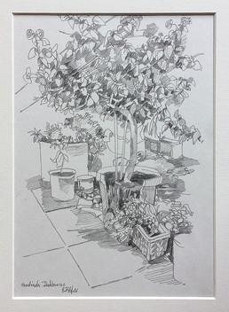 Dachterrasse, 2006, Bleistifft, 21x29 cm