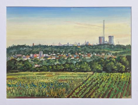 Morgenlicht, Ibbenbüren vom Teuto aus gesehen, 2021, Öl auf Papier, 30x40 cm, Pleinair