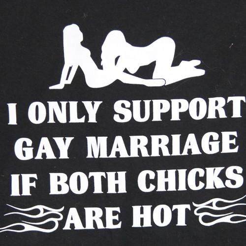Percent population gay