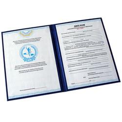 badge_diploma1