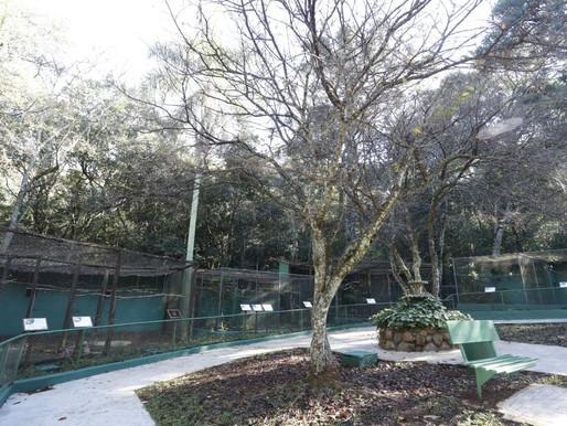 Com regras sanitárias, zoológico é reaberto ao público