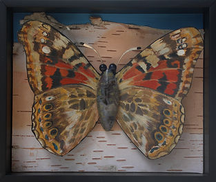 Painted Lady Habitat-Pin.jpg