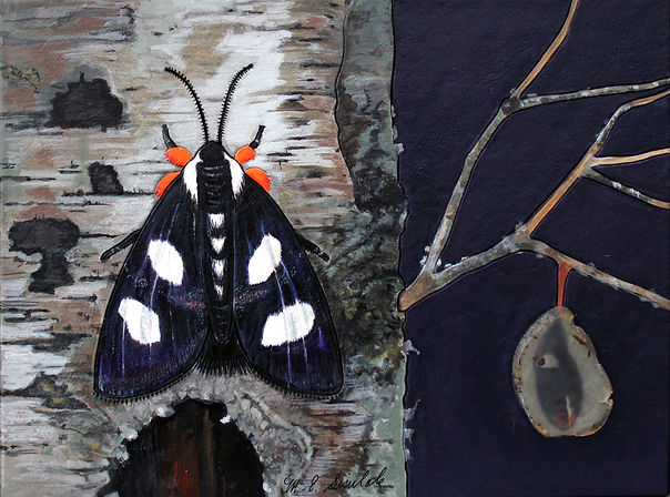 MES 6 Spotted Moth 2019 mixed media 10.5