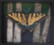 Swallowtail Habitat-Pin.jpg