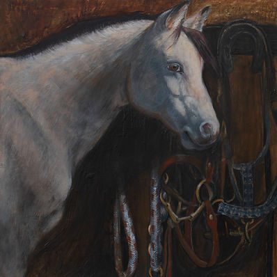 horse and tack 2.jpg