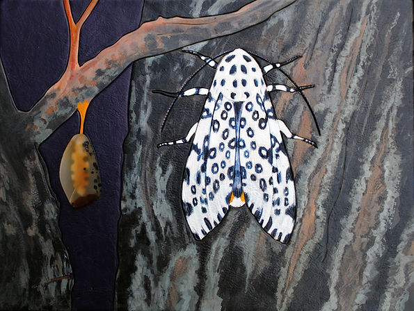 Ikat Leopard Moth.jpg