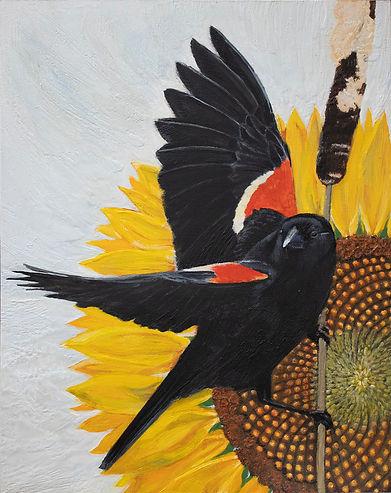 Blackbird Fly Away 1mb.jpg