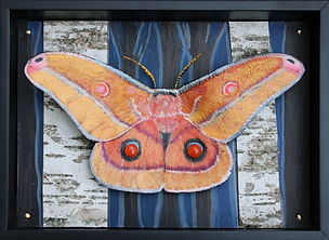mes silk moth habitat 2020 mixed media 5