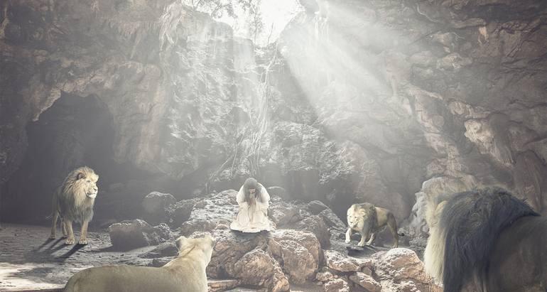 The Lion's Den...Again?