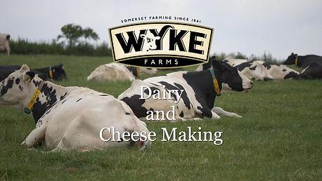 Wyke Farm Cheese Making