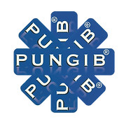 LOGO_PUNGIB_large_1080-removebg-preview
