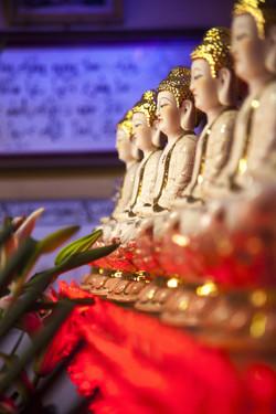 Hoi Son Pagoda