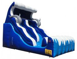 Dolphin 18' Slide DS-18