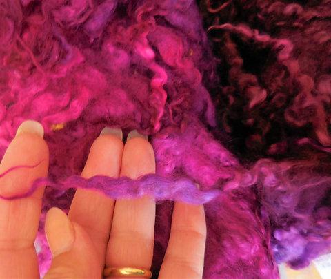 Morceau de toison teintée mouton anglais Masham