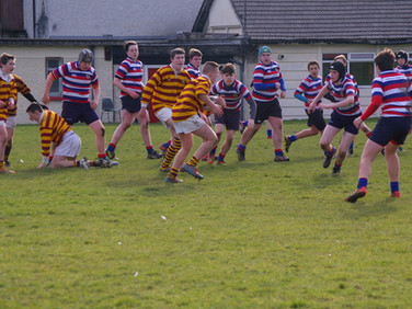 2nd Year v Templeogue 2015