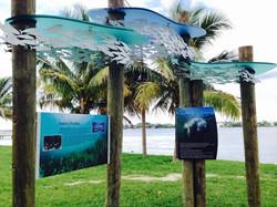 Currie Park Interpretive Design