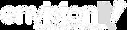 Envision it_Logo_White & Gray.png