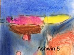 Ashwin 5
