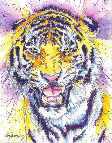 Geaux Tigers