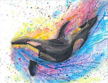 Orca 11x14 website.JPG