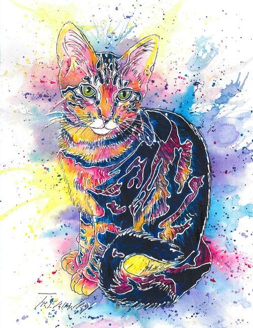 Ossie Kitty
