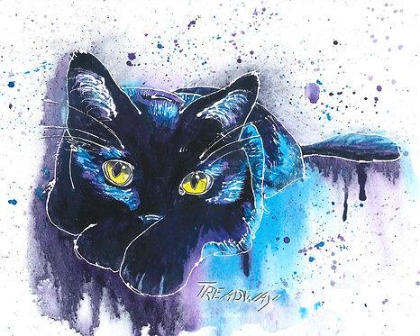 Resting Black Cat