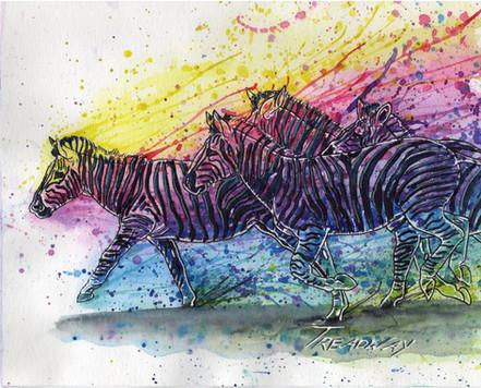 Colorful Zebra Herd