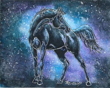 The Black Stallion (Walter Farley's Black)