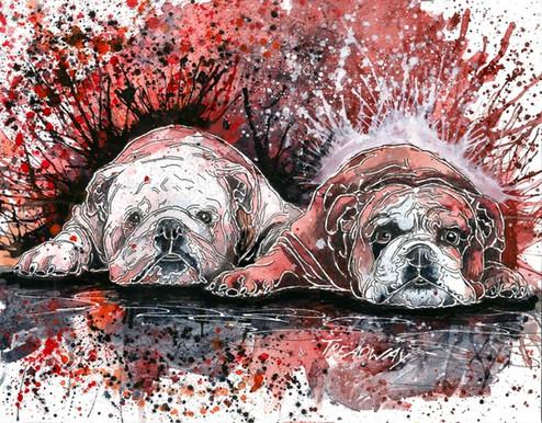 Bulldog Family (UGA and Bully)