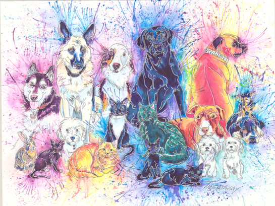 Quail Hill Animal Hospital Companions