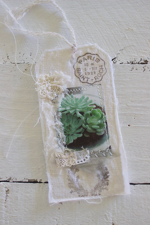 Green Succulent Gift Tag
