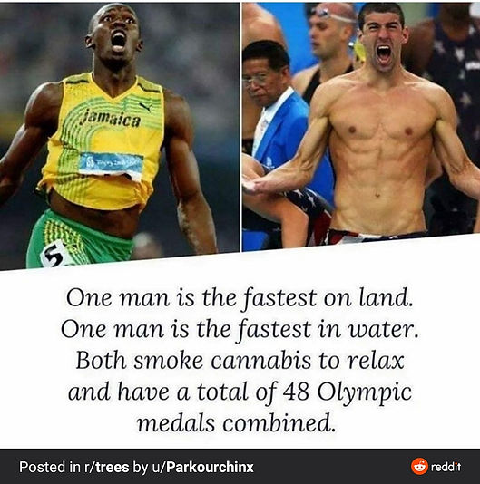 Usian Bolt and Micheal Phelps  Coffeeshop Smokerdam in Amsterdam Oud-Zuid