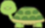 Tiny Turtles.png