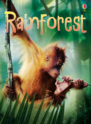 Usborne Beginners - Rainforest