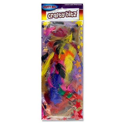 Multicoloured Feathers 10g Pack