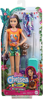 Barbie - The Lost Birthday - Skipper and Accessories