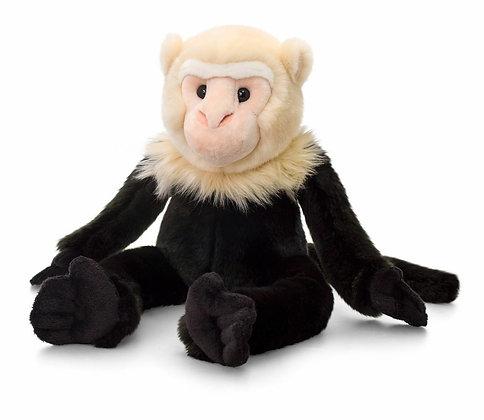 Keel 30cm Capuchin Monkey