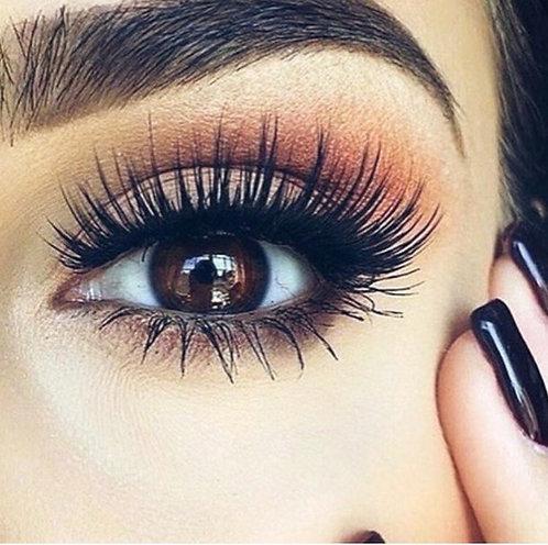 Everything Eyelashes Course