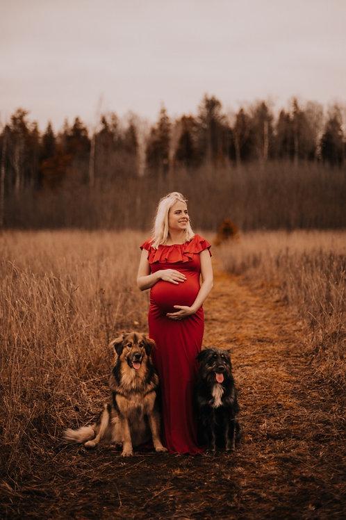 Punane pildistamise kleit