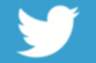 alltwitter-twitter-bird-logo-white-on-blue.png