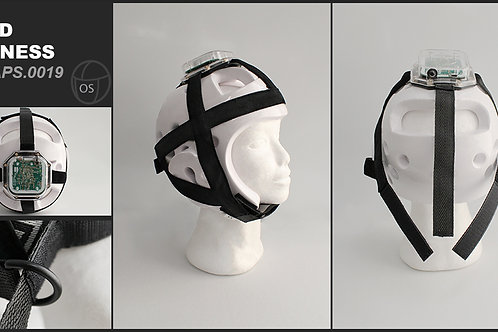 Head Electronics & Harness