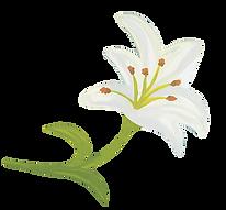 white wedding flower