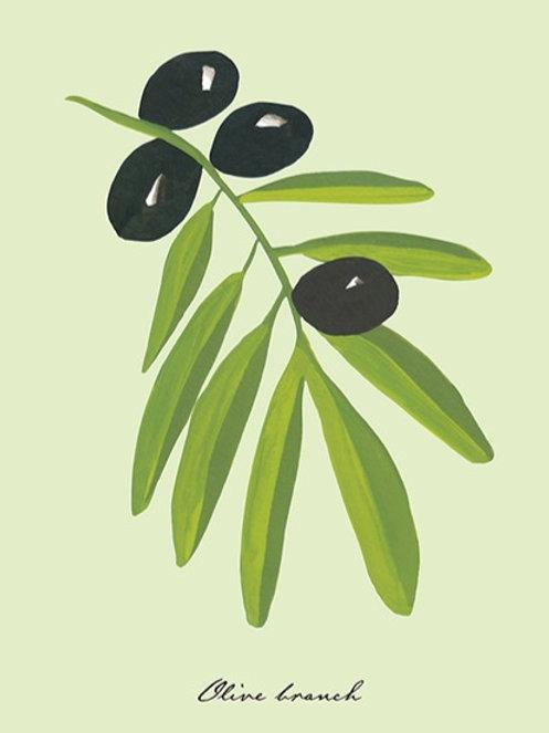 Olive Branch – Art Print