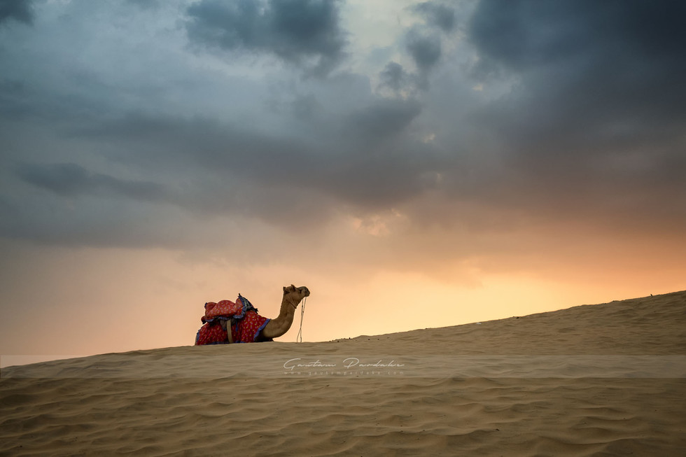 Beautiful landscape photograph from the desert town of Jaisalmer in Rajasthan, India